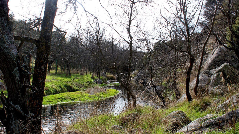 Dónde están los molinos río Perales