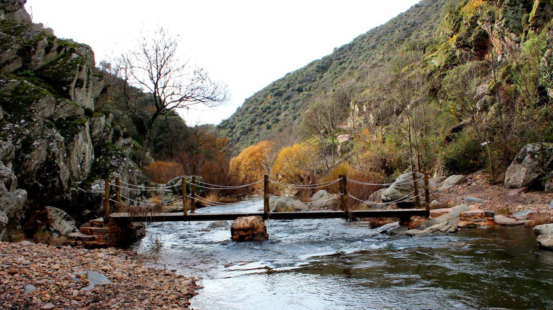 Puente sobre el Estena en Cabañeros