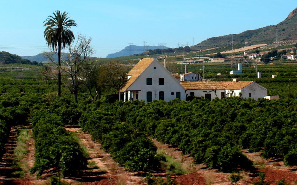 Barraca, huertos en Sagunto-Valencia