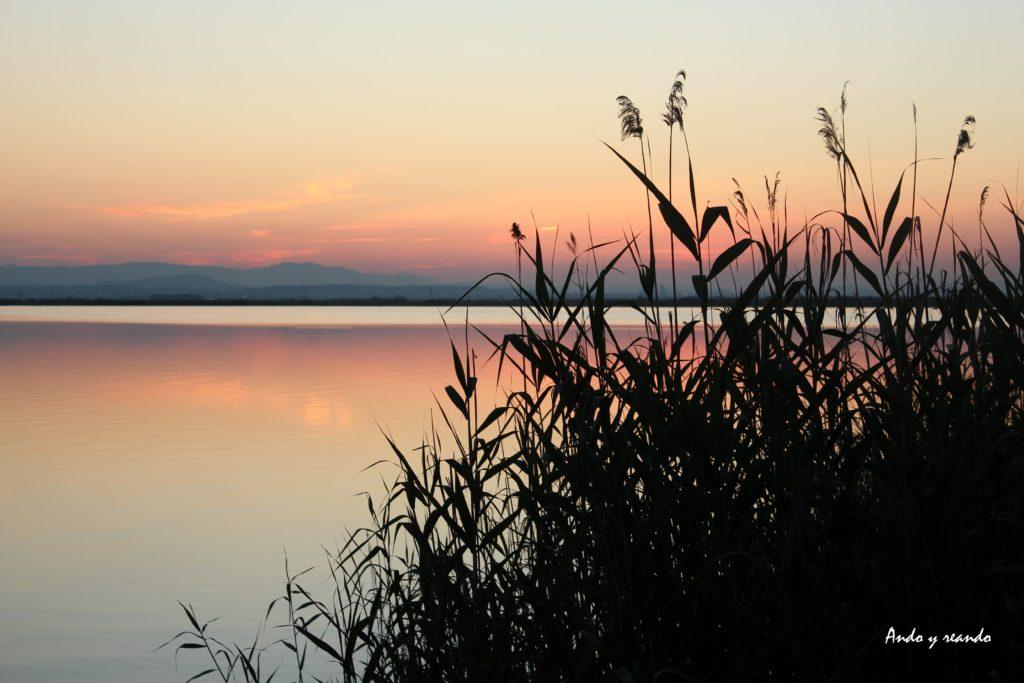 Laguna de la ALbufera-Valencia