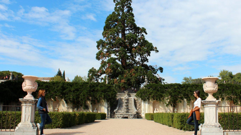 Jardines quinta duque del Arco