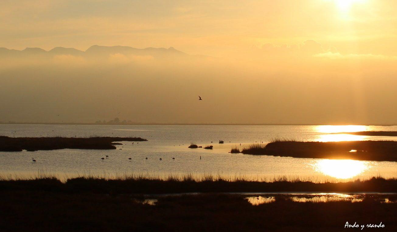 Guía para viajar al Delta del Ebro