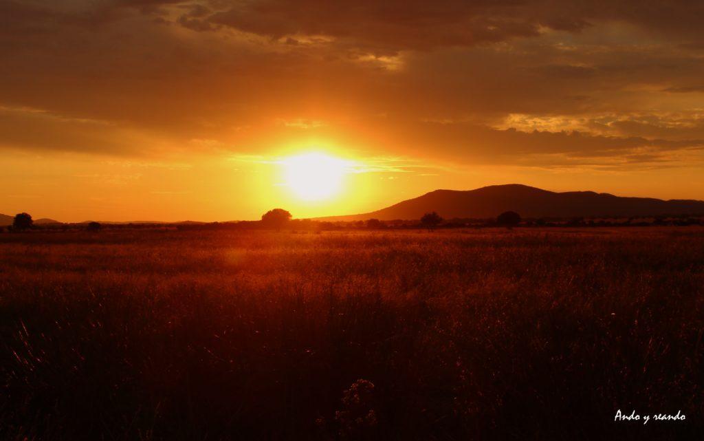 Puesta de sol en el Serengueti español