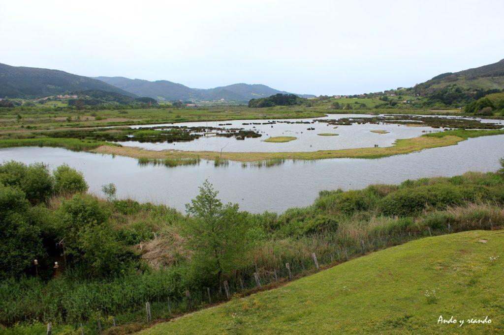 Vistas desde Urdaibai Bird Center