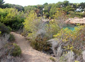 Camí de Ronda en Tarragona
