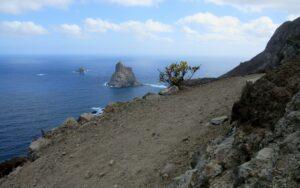 Punta Baja de la Palma