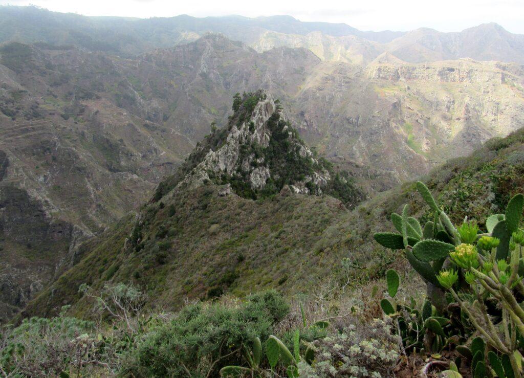 Roque de los Pinos en Tenerife