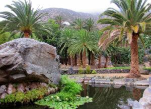 Jardín botánico de Vallehermoso en La Gomera