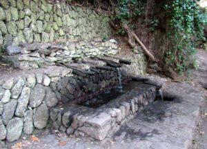 Chorros de la Epina en La Gomera