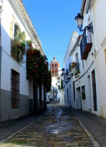 Calle con flores en la Puerta de Jerez de Zafra