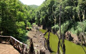 Ruta por el embalse de Meriga en La Gomera
