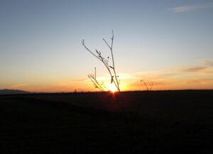 Puesta de sol en el embalse de Arroyo Conejo
