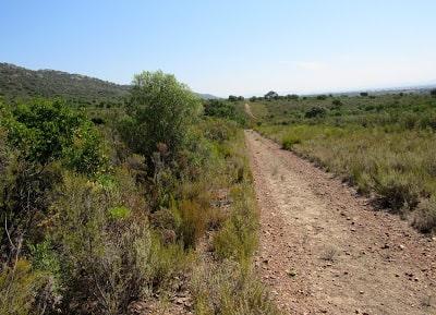 Rutas por el Parque Nacional de Cabañeros