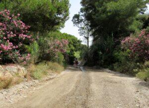 Ruta por la rambla del Cañar en La Azohía