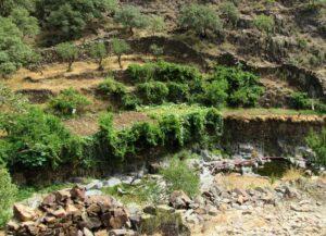 Terrazas de cultivo en Las Hurdes