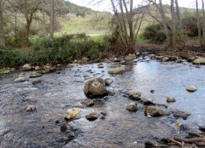 Ojo en el río Guadalix