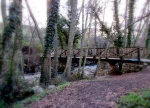 Puente de madera de la cascada del Hervidero
