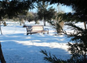 Banco de madera con nieve