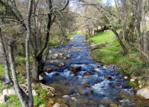 Ruta molinos río Cofio