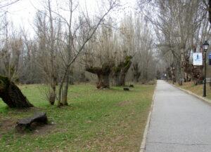 Paseo de Rascafría