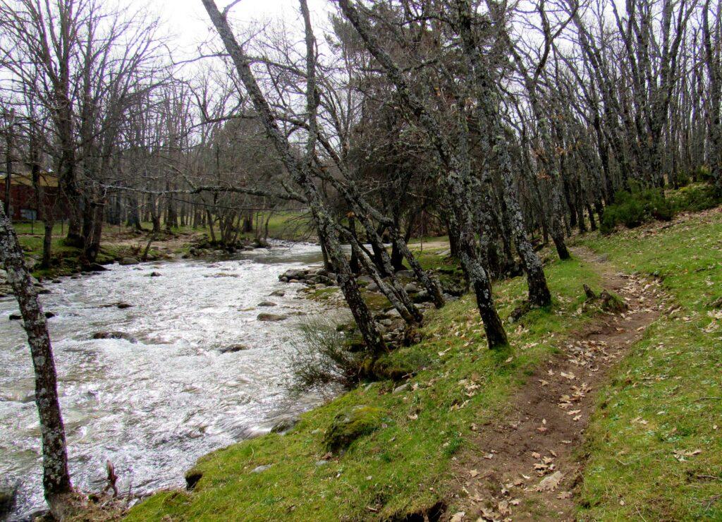 Río Lozoya ruta