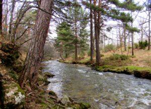 Paisajes del río Lozoya
