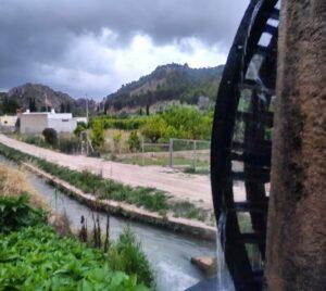 Noria valle de Ricote