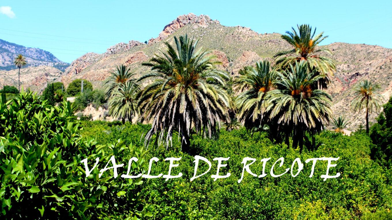 Valle de Ricote ruta en coche