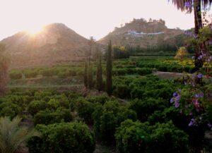 Qué ver y hacer en el valle de Ricote