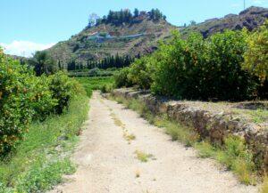 Paseos por el Valle de Ricote
