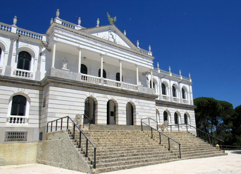 Qué ver gratis en Doñana