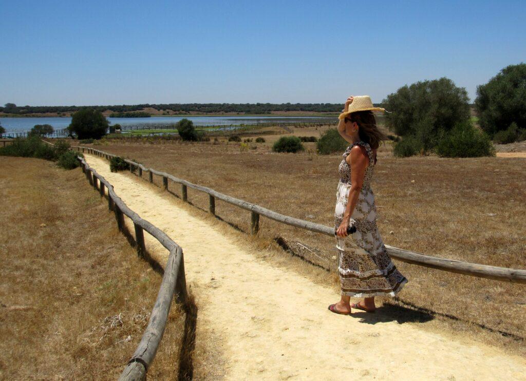 Qué ver en Doñana gratis