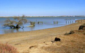 Río Guadalquivir Doñana