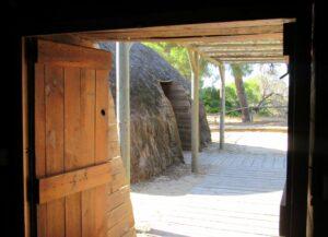 Qué ver en Doñana